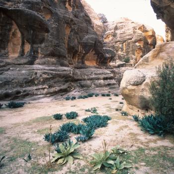 Ancient Nabataen settlement of Baida